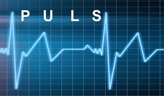 Puls Program